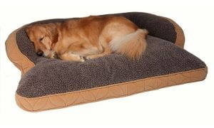 10 Best Large Dog Beds