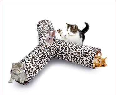 isYoung cat tunnel play tube collapsible