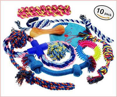 Lobeve dog toys 10 pack gift set for puppies