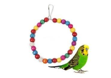 12 Best Parakeet Toys