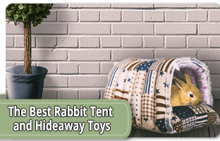 The best rabbit tent and hideaway