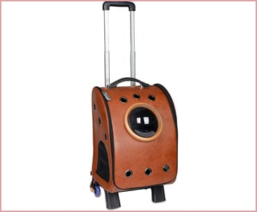 Pettom pet bubble cat backpack