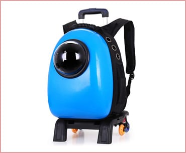 pettom pet bubble cat backpack