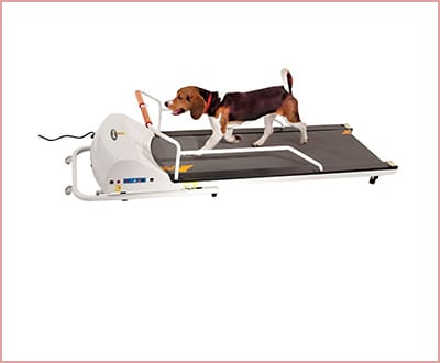 GoPet treadmill small/medium size