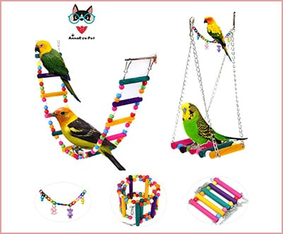 Hanging parakeet toy set with hammock and swing colorful