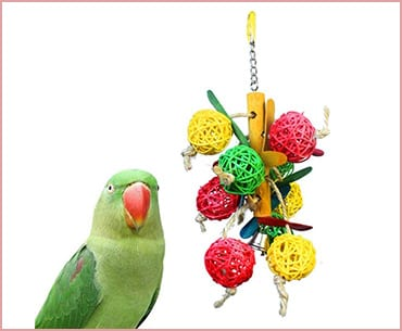 MAIYUAN Bird Toy for Parrot