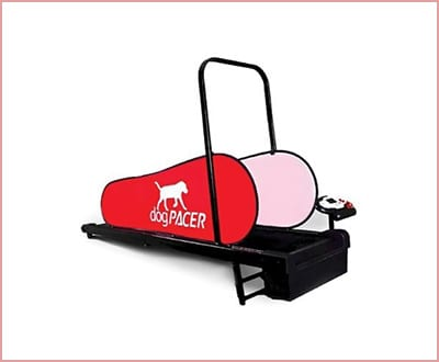 MiniPacer dog treadmill by DogPacer