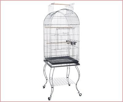 Bird Parrot Cage Cockatiel African Grey