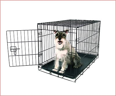 Carlson single door dog crate in black