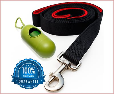 Benicci dog leash with bag dispenser