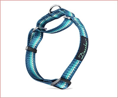 Dazzber Martingale durable dog collar