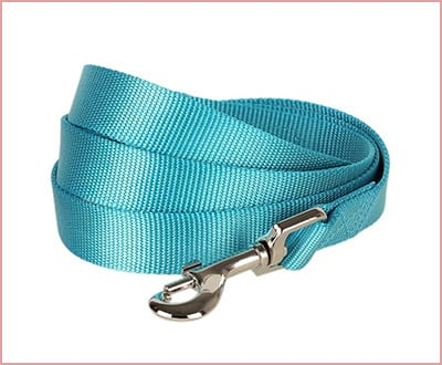 Blueberry pet classic solid dog leash
