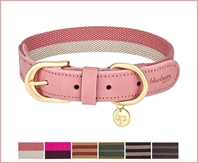 Blueberry Pet multi colored leather stripe dog collar