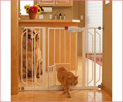 Carlson with an extra wide walk thru gate with pet door dog gate