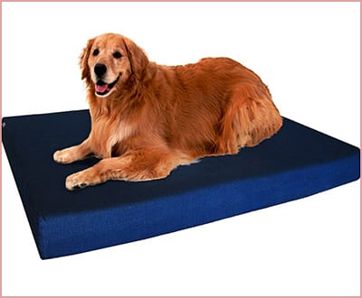 Dogbed4less orthopedic gel infused cooling memory foam dog bed for large dogs