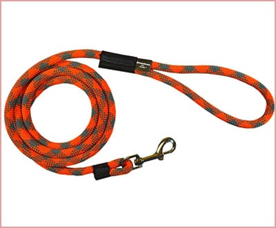 Downtown strong dog rope leash