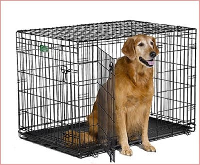 MidWest iCrate folding metal dog crate in black