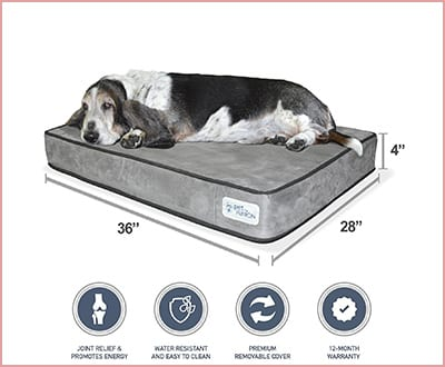 PetFusion Serenity Lounge dog bed memory foam