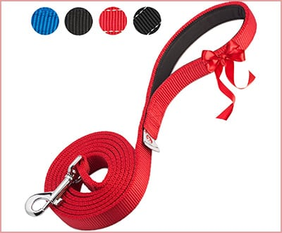 PetsLovers Premium dog leash with heavy duty strap