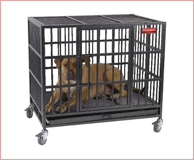 ProSelect Empire dog crate with steel tray
