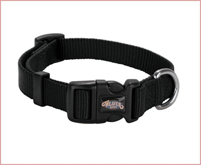 Weaver Prism Snap n' Go dog collar