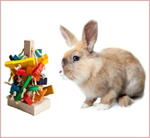 the tree wooden pet rabbit toy