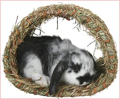Peters woven grass hideaway
