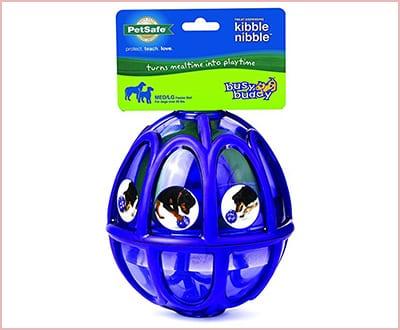 PetSafe busy buddy Kibble Nibble