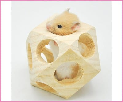 Niteangel Wooden Interactive Toy Ball for Small Animals