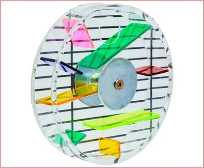 Niteangel Parrot Creative Foraging Systems, Foraging Wheel, Bird Foraging Toy, 6-inch Diameter