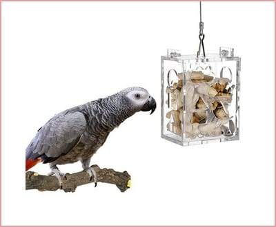 Parrot Creative Foraging Toy Feeder Bird Intelligence Growth Cage Acrylic Box Toys by KinTor