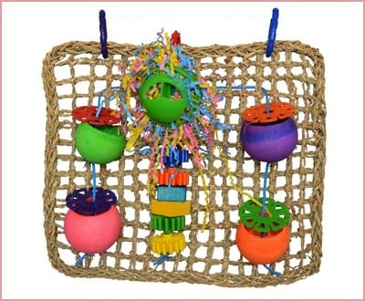 Super Bird Creations Seagrass Foraging Wall Toy for Birds