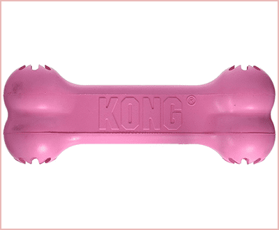 Kong Small Puppy Goodie Bone best chew toys for puppies