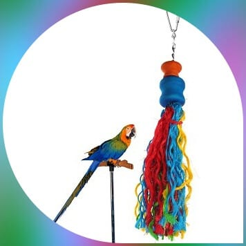 parakeet on perch beside jusney colored rope