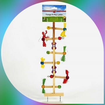 kaytee ladder toy for birds