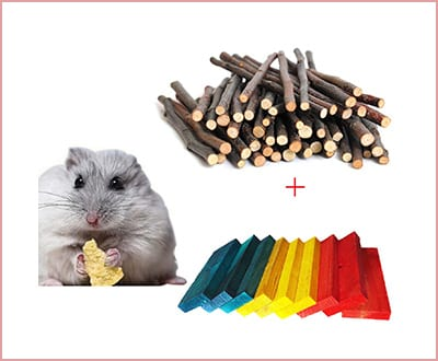Best Bwogue Chew Toys for Hamsters