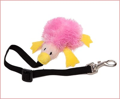 Best Marshall Bungee Ferret Toys