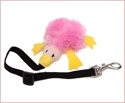 Best Marshall Bungee Ferret Toys