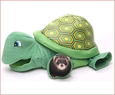 Best Marshall Turtle Tunnel Ferret Toys
