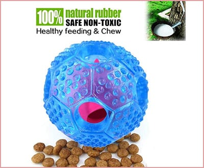 Best Noyal Interactive Toys for Chihuahuas