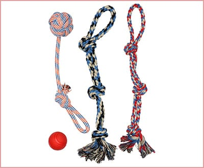 Pacific Pups XL Rope Pitbull Chew Toys