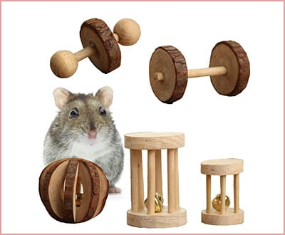 Best Pevor Pack of 5 Chew Toys for Hamsters