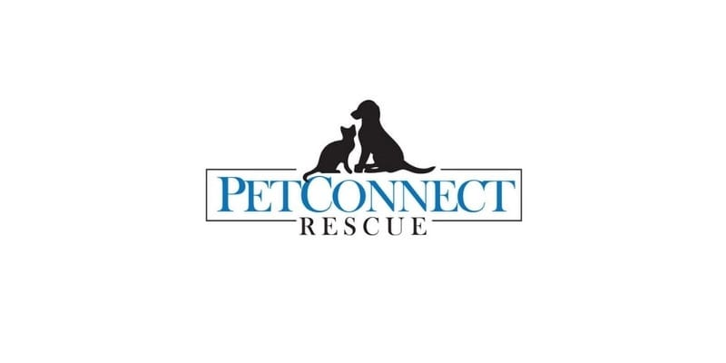 PetConnect Rescue: Robyn Buchsbaum on Saving Animals
