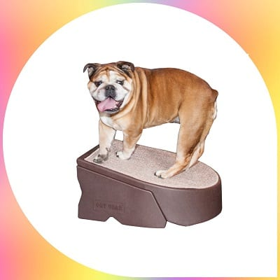 Pet Gear Step and Ramp combination