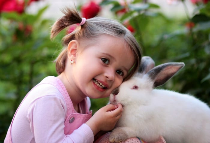 little girl cuddling white pet rabbit