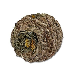 Naturals Dandelion Roll N Nest best toy balls