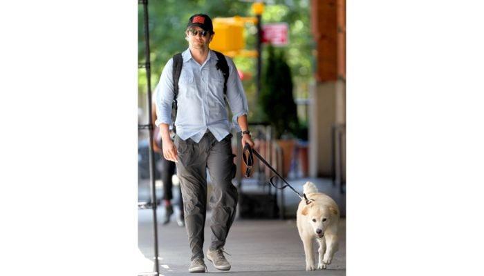 bradley cooper walking dog