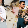 celebrity pets featured collage