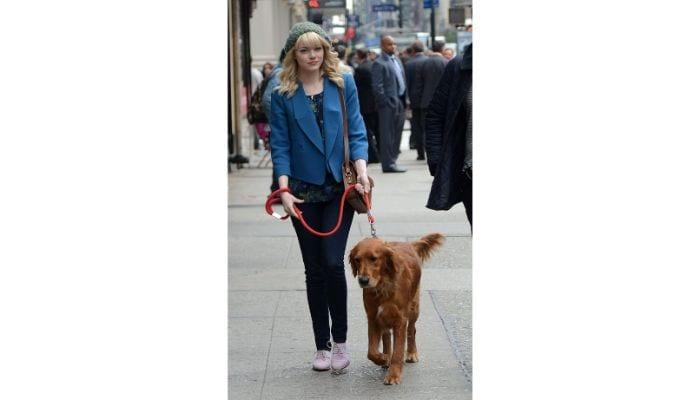 emma stone walking dog