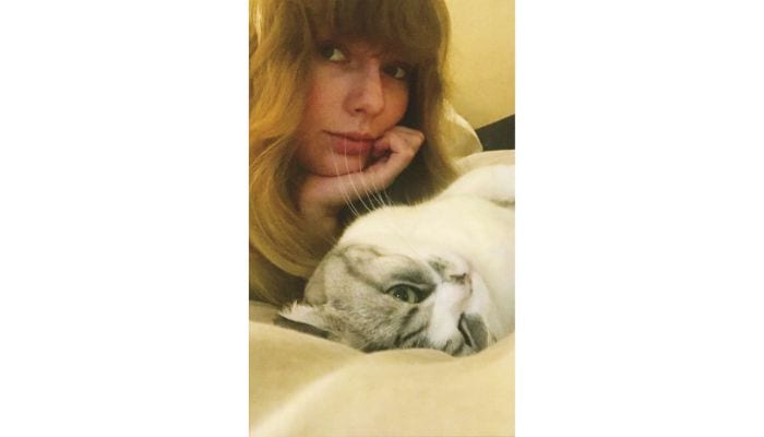 taylor swift selfie with cat
